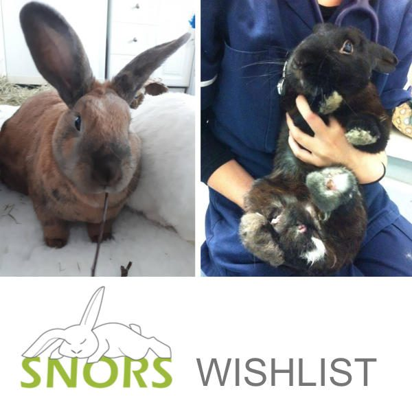 Wishlist for SNORS Rabbit Rescue