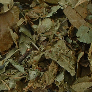 Single Dried Herbs - Apple Leaves 100gm Bag