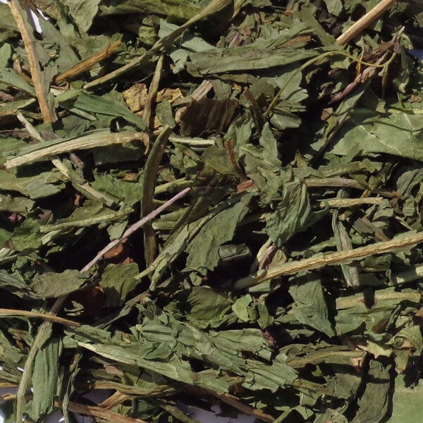 Single Dried Herbs - Dandelion Leaf 100gm Bag