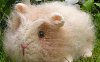 Knitted Guinea Pig by Debi Birkin