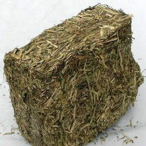 Grass Brick